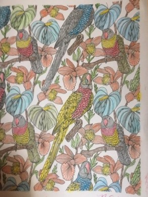 Birds in a coloring book